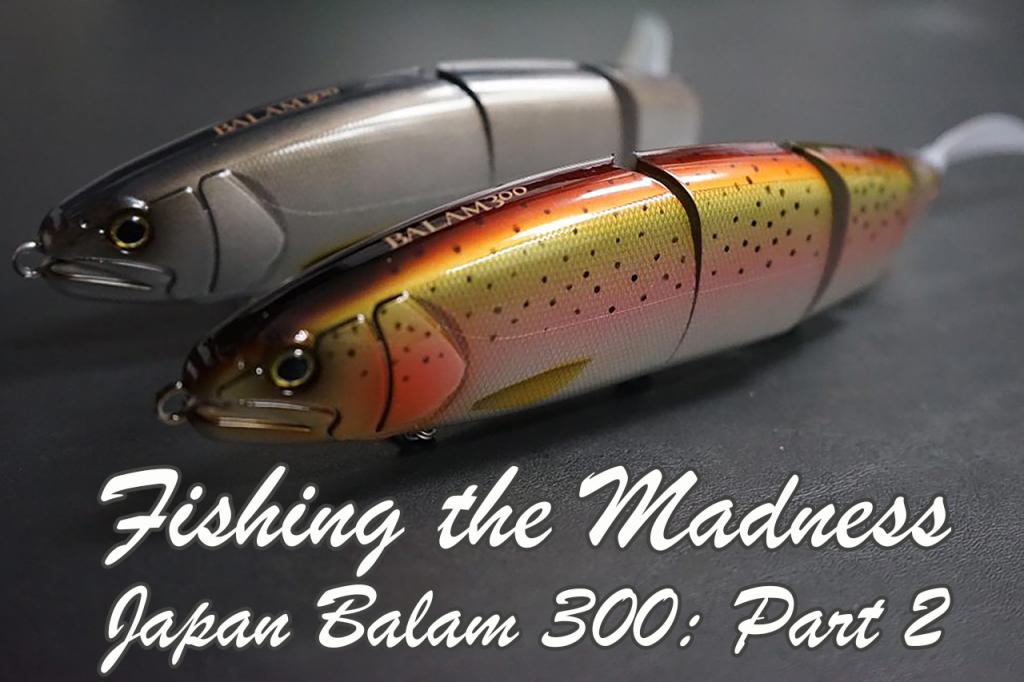 Fishing the Madness Japan Balam 300: Part 2